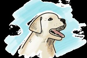 Hund Schulranzen Motiv