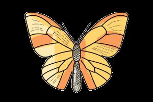Schmetterling Butterfly Schulranzen Motiv
